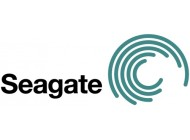 SEAGATE ST9900806SS