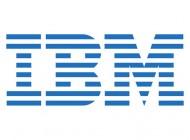 IBM 93P3483